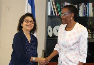 UNFPA Representative Presents Credentials